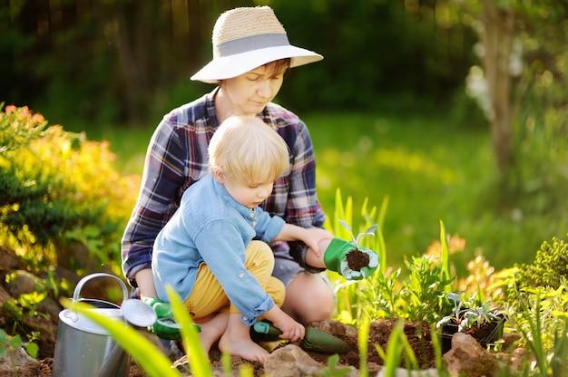 Mujer hermosa y su hijo lindo que plantan almácigos en cama en el jardín doméstico en el día de verano Foto Premium