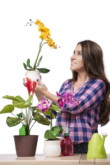 Mujer joven cuidando de las plantas caseras Foto Premium