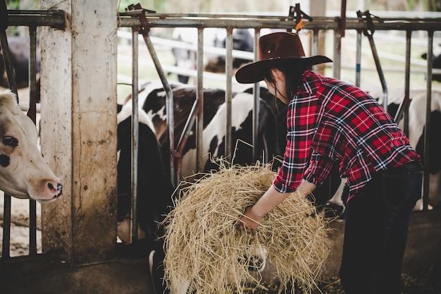 Mujer joven trabajando con heno para vacas en granja lechera Foto gratis