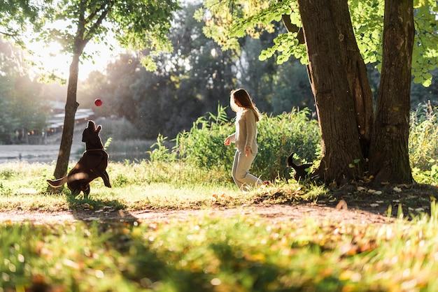Mujer y labrador jugando con pelota en el parque Foto gratis