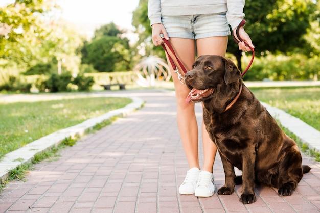Mujer de pie con su perro en la pasarela del jardín Foto gratis