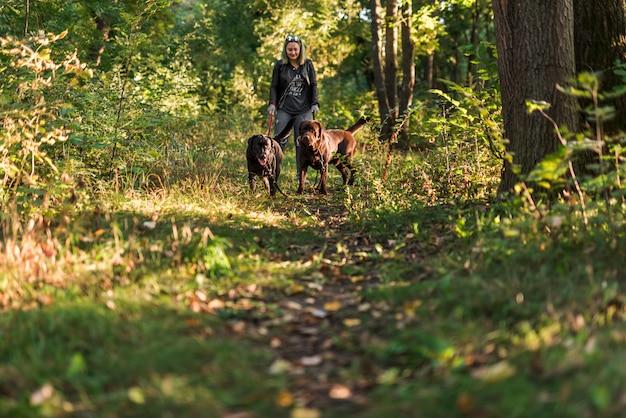 Mujer sonriente sosteniendo la correa de sus mascotas mientras camina en el bosque Foto gratis