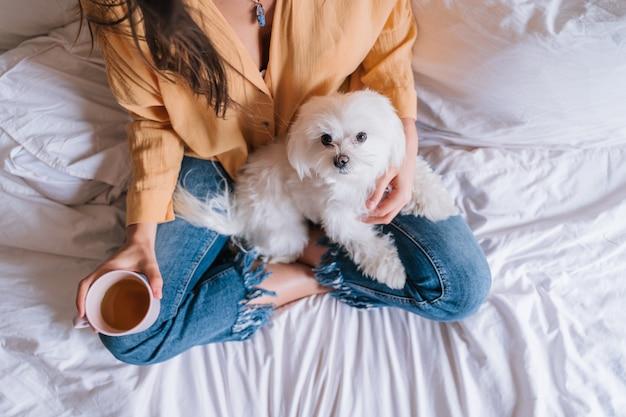 Mujer y su lindo perro en casa bebiendo té Foto Premium