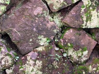 Muro de piedra natural y h medo descargar fotos gratis - Muro de piedra natural ...