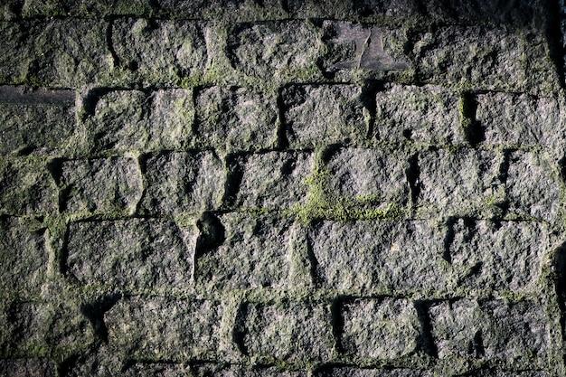 Musgo roca pared hermosa naturaleza sensación texturas fondo Foto Premium