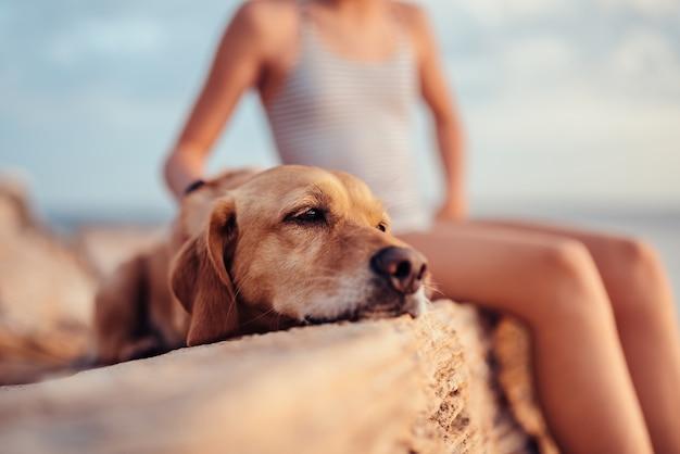 Niña abrazando a su perro mientras está sentado en la roca junto al mar Foto Premium