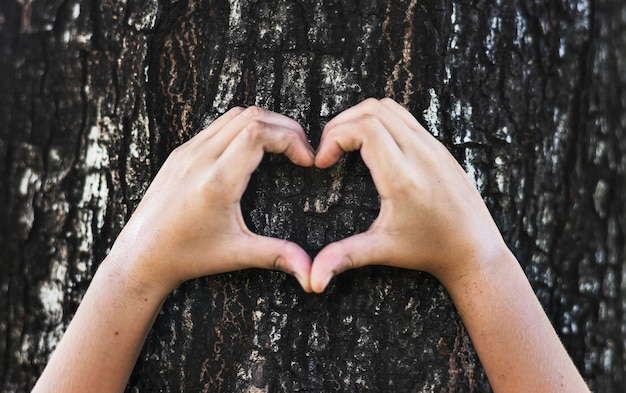 Niño haciendo una forma de corazón en un árbol Foto gratis