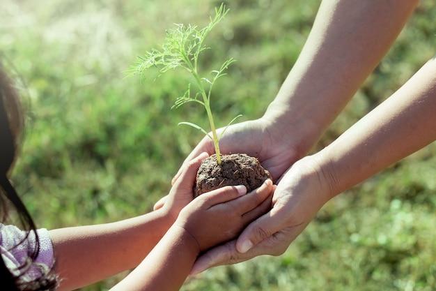 Niño niña y padre con planta joven en las manos juntas Foto Premium