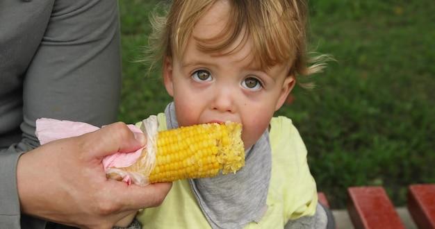 Niño pequeño que come el maíz en la calle en un fondo del césped Foto Premium