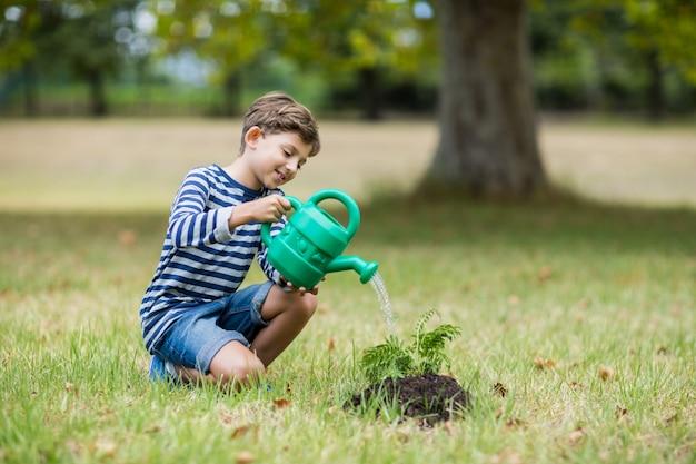 Niño regando una planta joven Foto Premium