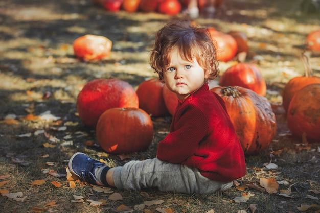 Niño sentado en el césped con calabazas Foto Premium