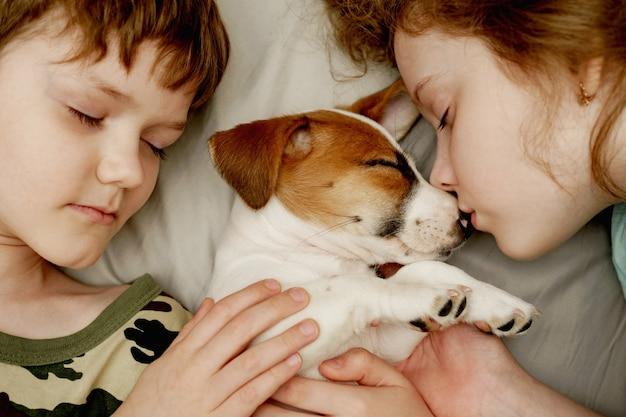 Los niños poniendo y abrazando a un cachorro jack russell terrier. Foto Premium