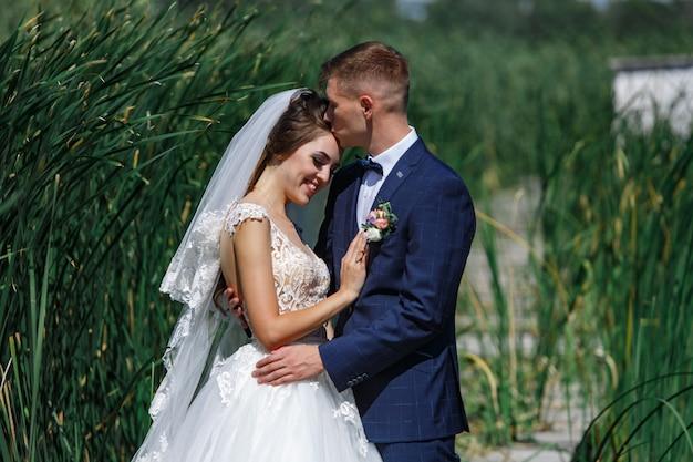 Las novias sonrientes se abrazan suavemente y se besan al aire libre. joven pareja enamorada disfrutando rach otro en el paseo en la naturaleza. feliz novia y el novio camina en la hierba alta al aire libre. Foto Premium