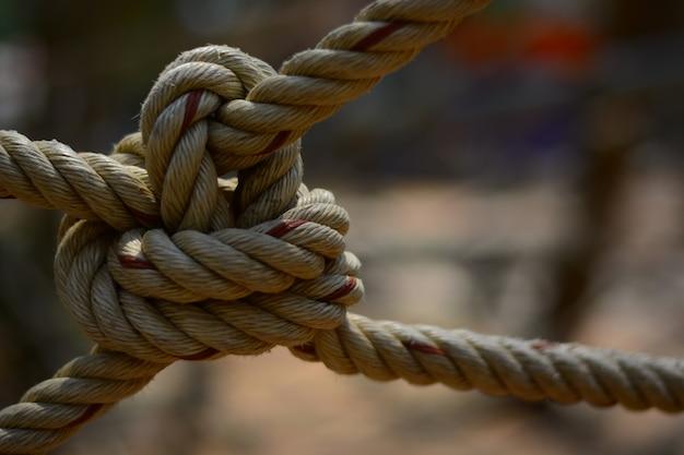 El nudo de la cuerda para aventurarse en la actividad scout. Foto Premium