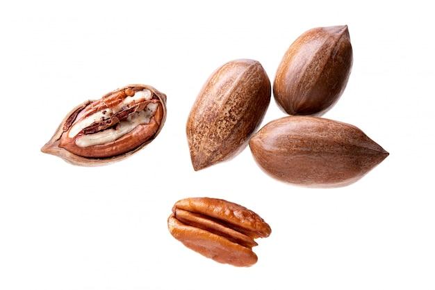 Nueces de pacana aisladas en blanco. carya illinoinensis Foto Premium