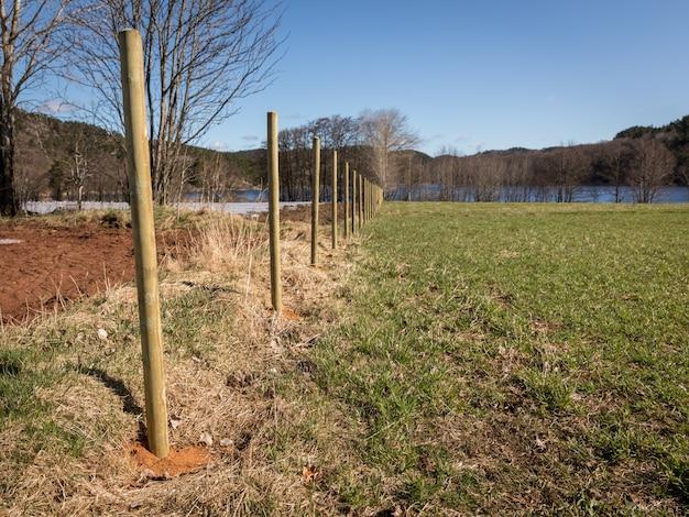 Nuevos postes de la cerca de madera en un campo. paisaje y cielo azul Foto Premium