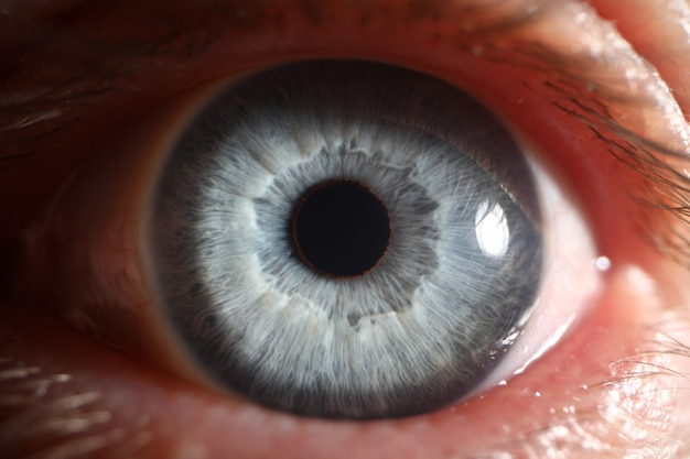 Ojo azul macho humano super macro closeup Foto Premium