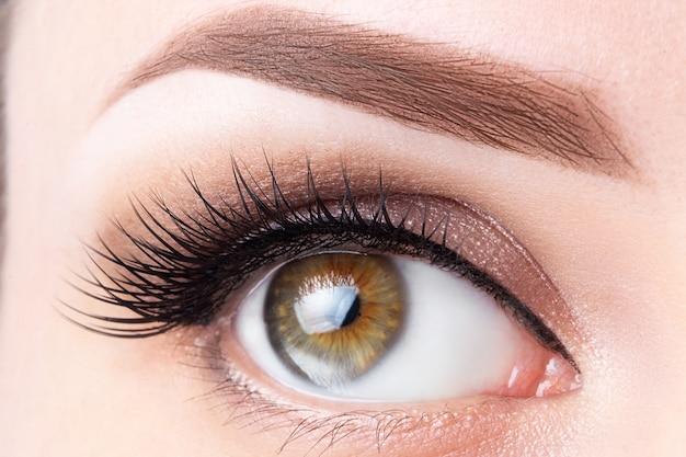 Ojo con pestañas largas y primer plano de ceja marrón claro. laminación de  pestañas, microblading | Foto Premium