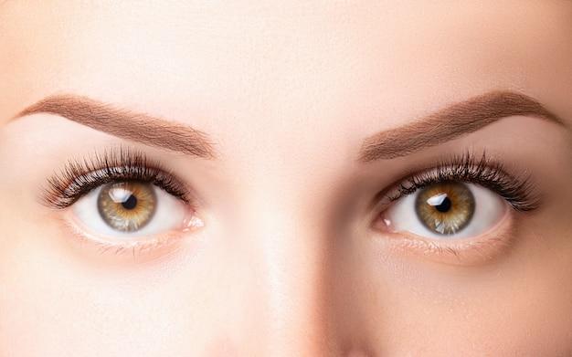 Ojos femeninos con pestañas largas. clásico 1d, extensiones de pestañas 2d y cejas de color marrón claro de cerca. extensiones de pestañas, laminación, biowave, concepto de microblading Foto Premium