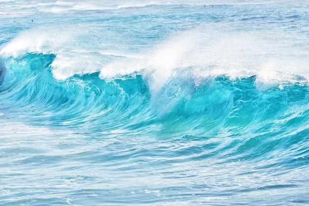 Olas turquesas en sandy beach, hawaii Foto Premium