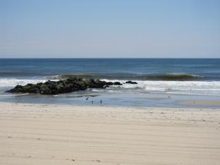 orilla de la playa de arena Foto Gratis