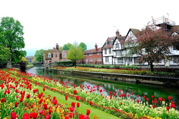 Paisaje Brumoso De Canterbury Con Tulipanes Florecientes Y