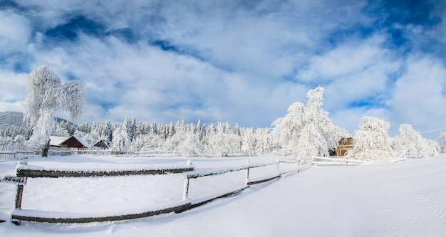 Paisaje de invierno en las montañas Foto Premium