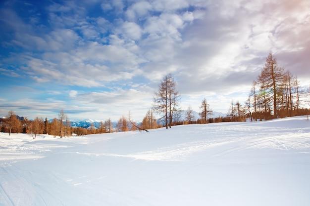 Paisaje de invierno Foto Premium