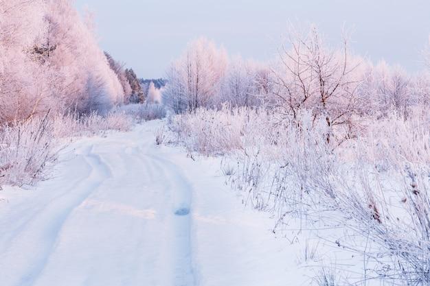 El camino. - Página 5 Paisaje-manana-camino-nieve_89378-15