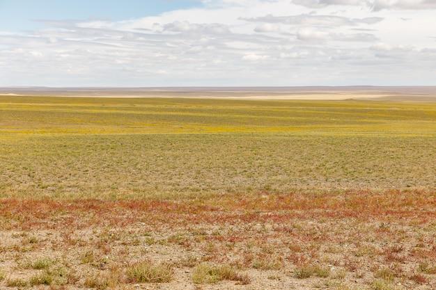 Paisaje mongol en el desierto de gobi Foto Premium