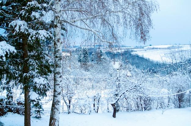 Paisaje de la naturaleza del invierno en las colinas rurales. escena de la naturaleza de la belleza cubierta con nieve Foto Premium