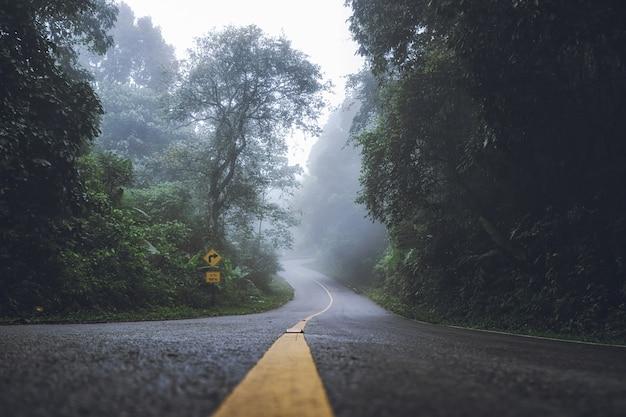 Paisaje de niebla densa en los caminos y señales de tráfico en el bosque en invierno. Foto Premium