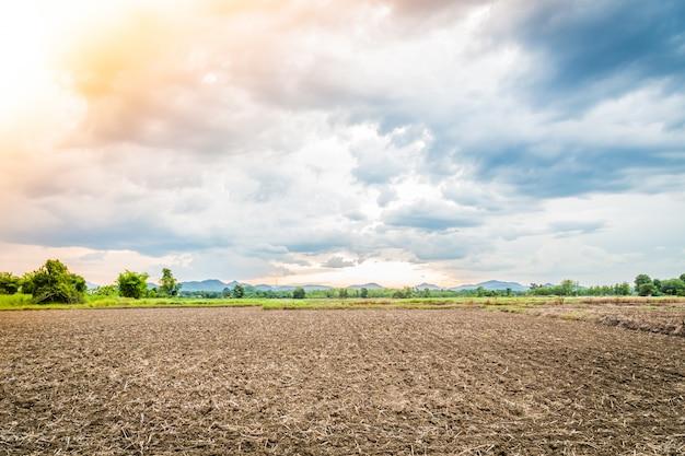 Paisaje de tierra cultivada Foto gratis