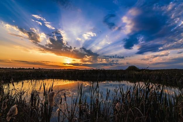 Paisaje de verano con el reflejo de la puesta del sol y los rayos del sol en el agua del estanque Foto Premium