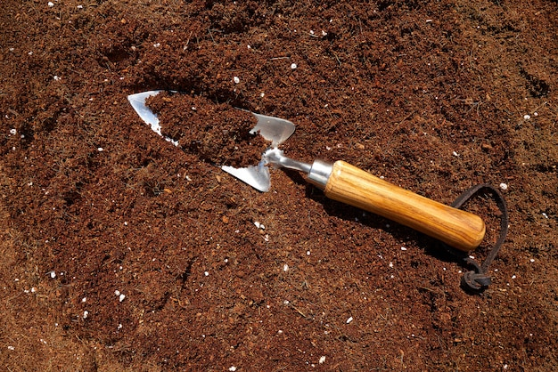 Paleta de jardín sobre sustrato orgánico. Foto Premium