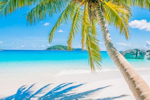 Hotel Elegance Palmeras Playa - Roomsdaycom