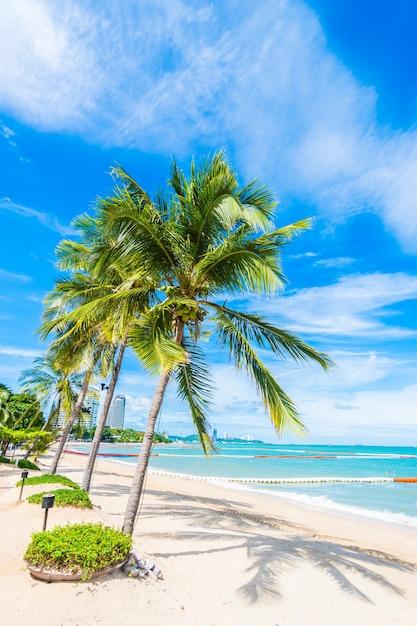 Palmeras En La Playa Descargar Fotos Gratis