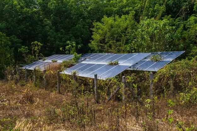 Panel solar y naturaleza. Foto Premium