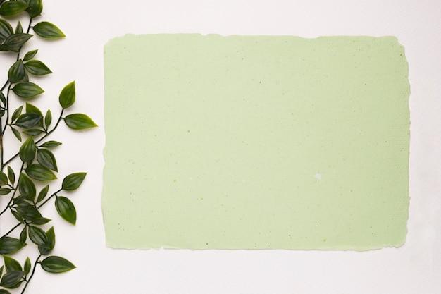 Papel verde menta cerca de las hojas artificiales aisladas sobre fondo blanco. Foto gratis
