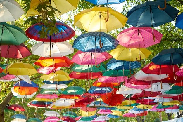 hacer un pedido Precio pagable rebajas outlet Paraguas de colores colgando de árboles | Descargar Fotos gratis