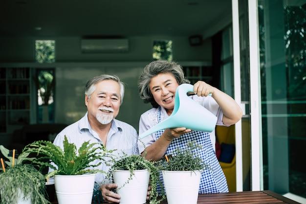 Parejas mayores hablando juntos y plantar árboles en macetas. Foto gratis