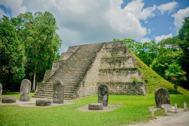 Parque nacional arqueológico de tikal. Foto Premium