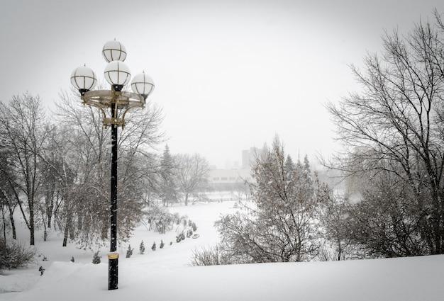 Parque de nieve Foto Premium