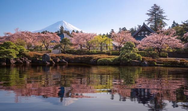 Parque sakura y pueblo con fondo de montaña fuji Foto Premium