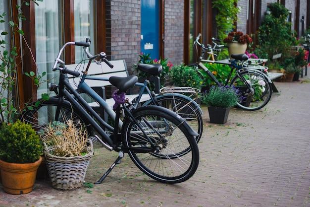 Patios acogedores de amsterdam, bancos, bicicletas, flores en tinas. Foto gratis