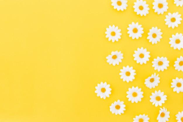 Patrón de daysies sobre fondo amarillo con espacio a la izquierda. Foto gratis