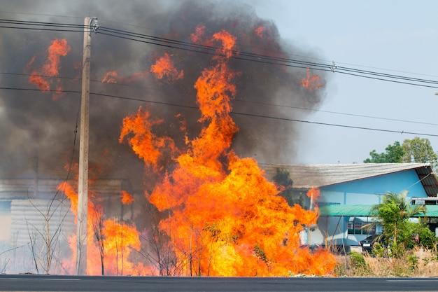 Peligro de incendio, árboles en la carretera, cables eléctricos, mucho humo negro flotando en el cielo. Foto Premium