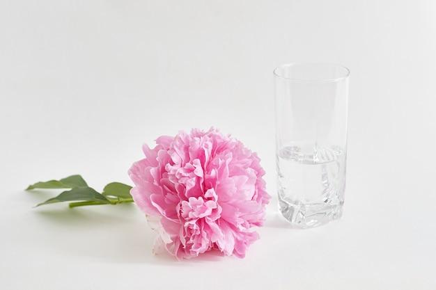 Peonía recién cortada se encuentra en la mesa, junto a un jarrón de agua. Foto Premium