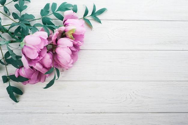 Peonías rosas y hojas Foto Premium