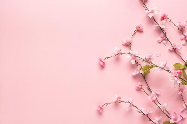 Pequeñas ramas de flores rosadas hermosas Foto gratis